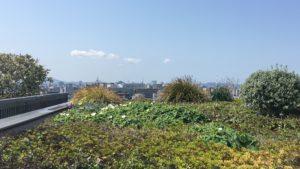 博多駅の屋上から